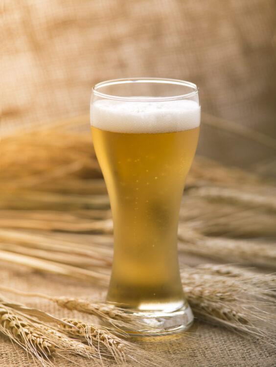 История пшеничного пива