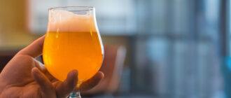 Что такое пиво Gose? Все, что вам нужно знать!