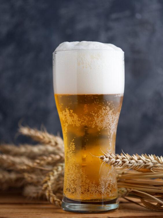 Пшеничное пиво – описание, история, сорта, с чем сочетать