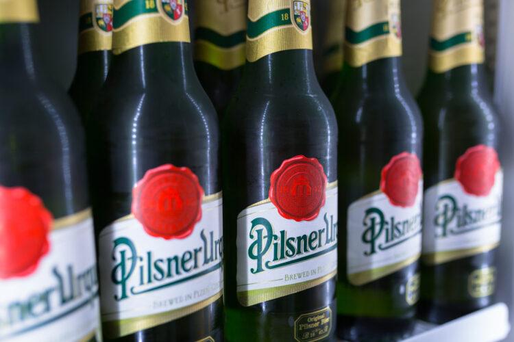 Чешский (Богемский) пилснер описание пива