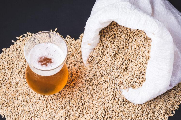 Что такое солод для пива? Определение, рецепт, виды солода